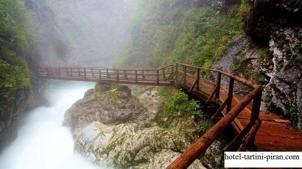 Ngarai Vintgar, Tempat Terindah di Slovenia Dengan Warna Air Biru Kehijauan